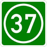 Knoten 37 grün