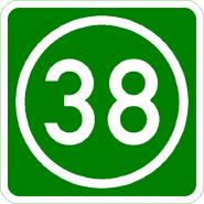 Knoten 38 grün