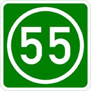 Knoten 55 grün