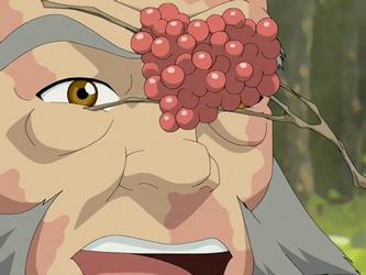 Frutinhas maka'ole