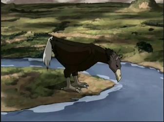 Cavalo avestruz