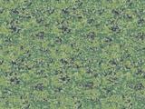 RDA Camouflage