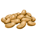 Resicon beans.png