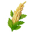 Resicon quinoa.png
