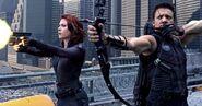 Avengers-hawkeye-black-widow