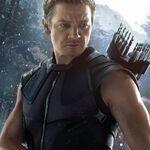 Charakterposter Hawkeye Avengers - Age of Ultron.jpg