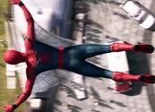 Web wings.jpg