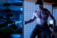 Wolverine Still 5