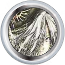 Badge-category-3