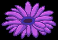 Pinz fleur violette