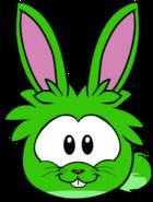 Puffle Lapin Vert 2