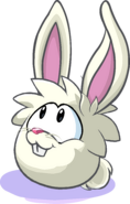Puffle Lapin Blanc 6