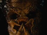 Crucified Predator
