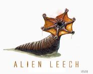 AELeech