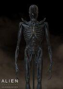 Alien--covenant-protomorph-by-colin-shulver-156669