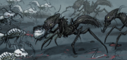 Mutated ant factions