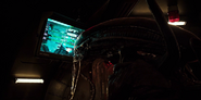 Xenomorph staring at the monitor