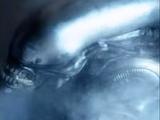 The Alien (Xenomorph)