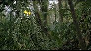 Predator-cloak-image-01 1203469753