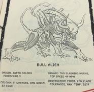 Bull concept2