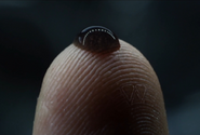 David 8 fingerprint