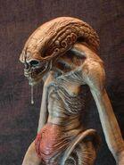417505-Alien newborn 3
