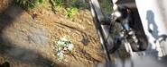 HG Fireteam Victory Predator killed2