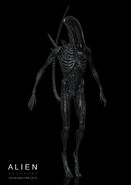 Alien--covenant-protomorph-by-colin-shulver-16120