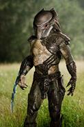 Falconer-predator