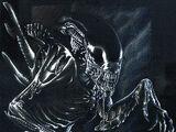 Xenomorph(Alien)