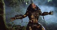 Predator-pic3