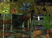 Proteus növények.jpg