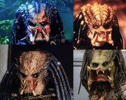 Predator1 fej.jpg