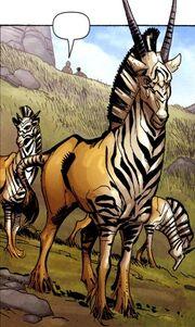 Zebraantilop.jpg
