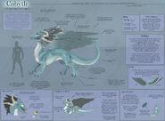 Cobyth Species Sheet by ulario