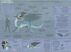 Cobyth Species Sheet by ulario.jpg