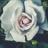 Luckyflower05's avatar