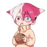 Riku Todoroki's avatar
