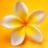 LynnE216's avatar