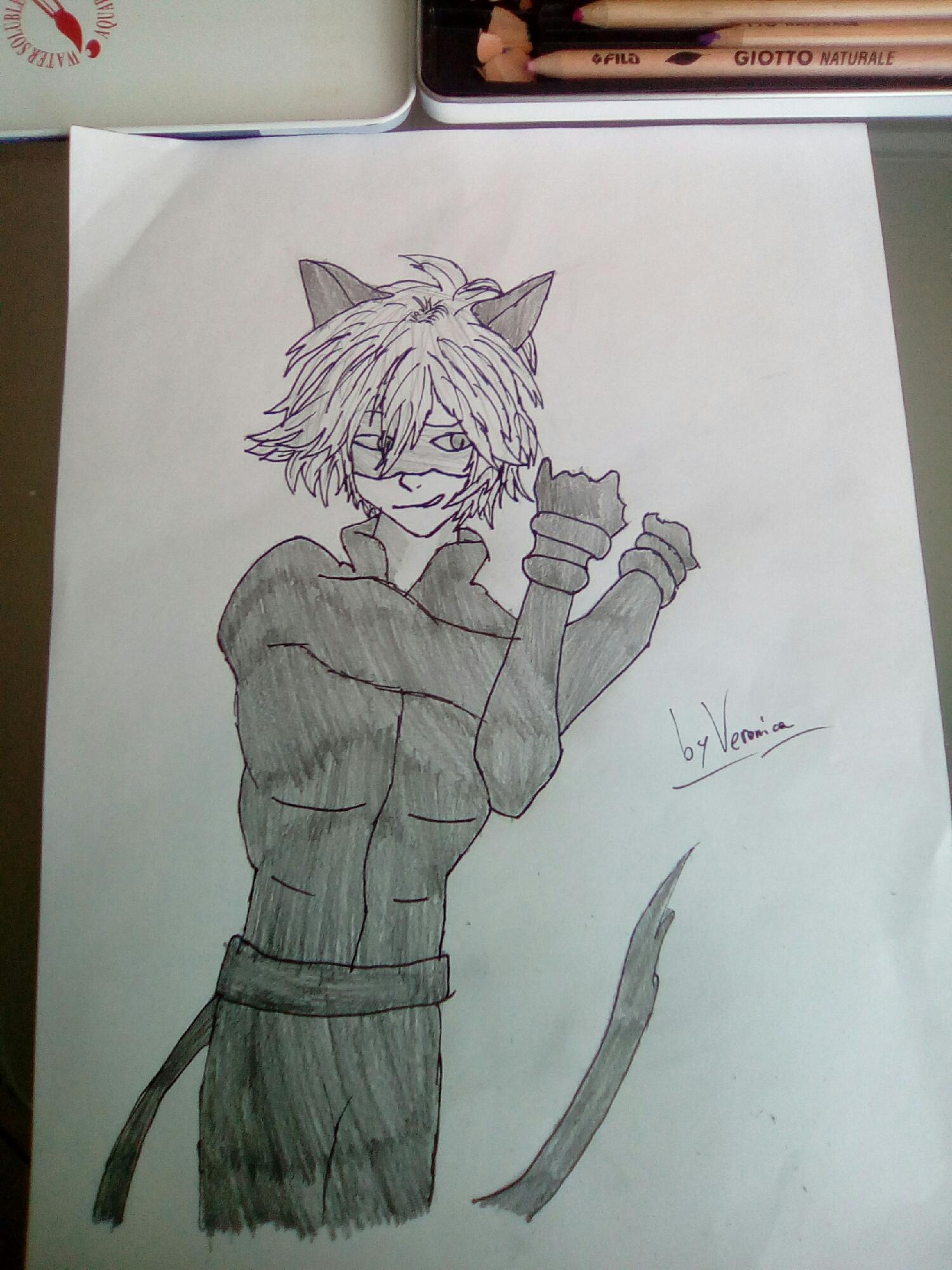 I love Cat Noire