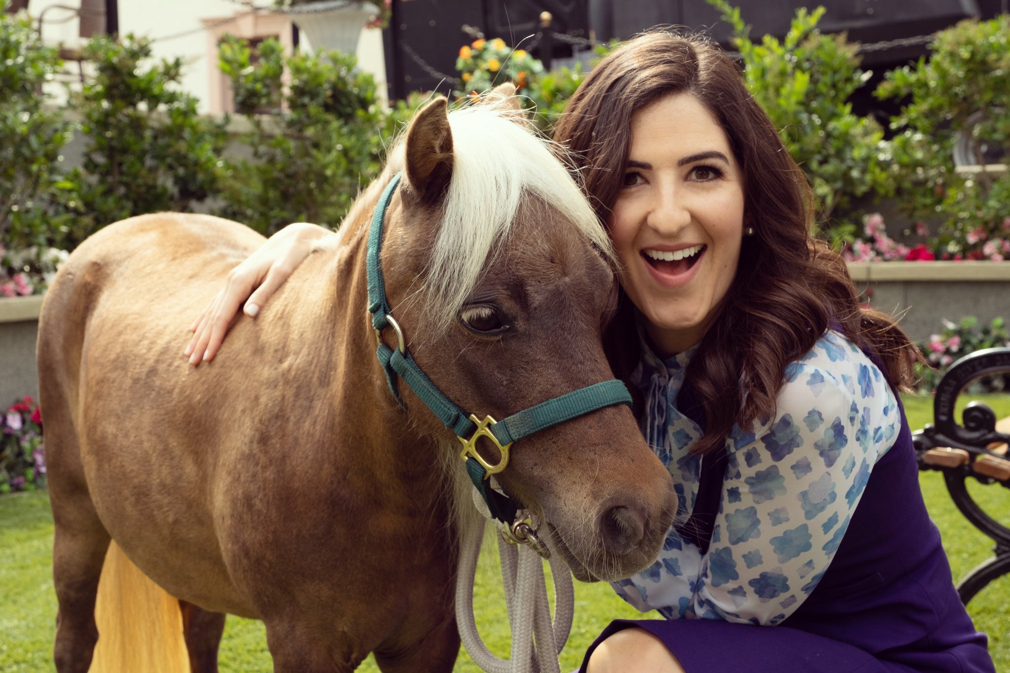 D'Arcy Carden on Twitter