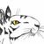 Тигрокрыс
