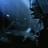Thefandimizer's avatar