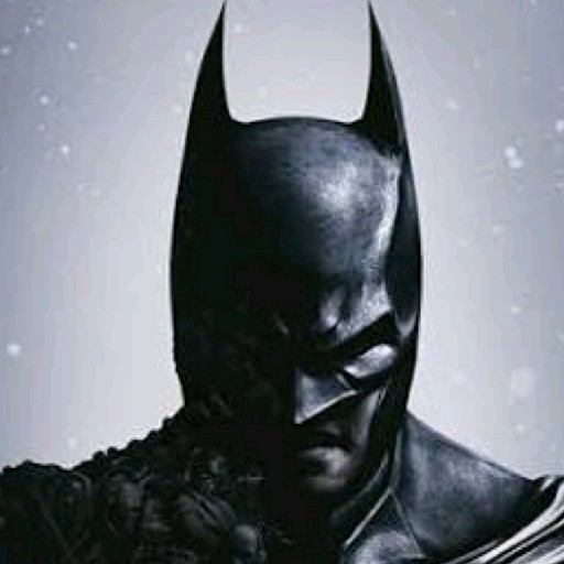 Viny the Batman's avatar
