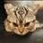 Katlypto's avatar