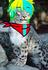 Myster Gacha BR's avatar