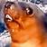 SKryo's avatar
