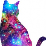 Happytwinklecat1543's avatar
