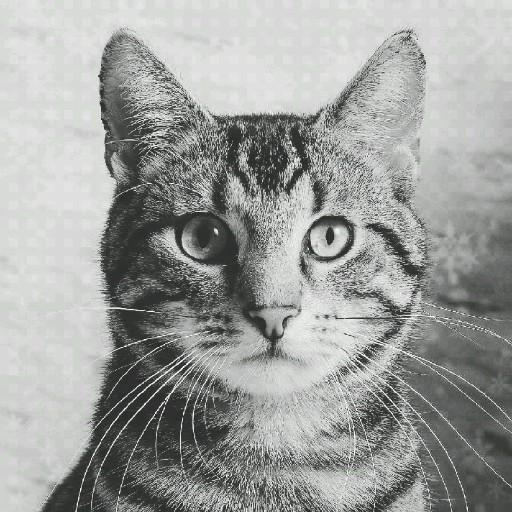 GreyCatsButModded's avatar
