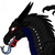 Midnight The Nightwing Animus Dragon